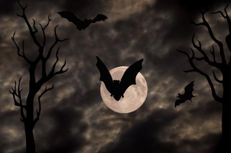 halloween-1001676_1920
